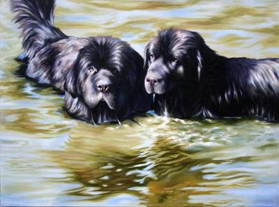 Newfoundlands Wading in River by AGillustration