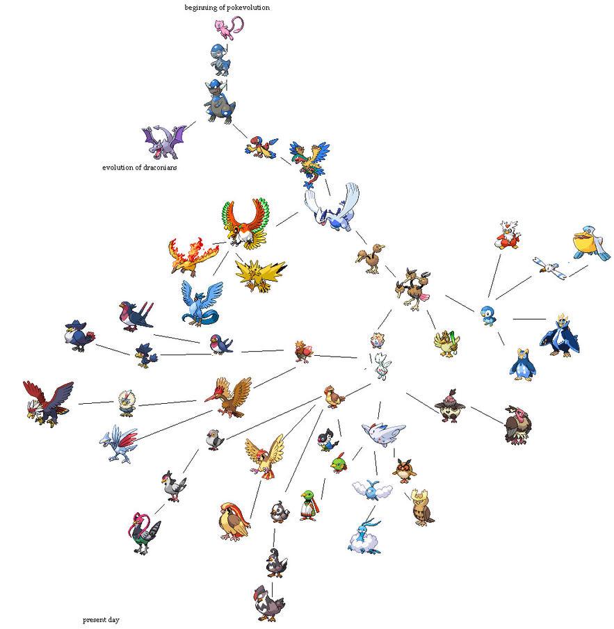 evolution of bird pokemon by AggrontailPokemon Cranidos Evolution