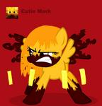 Blaze Pony