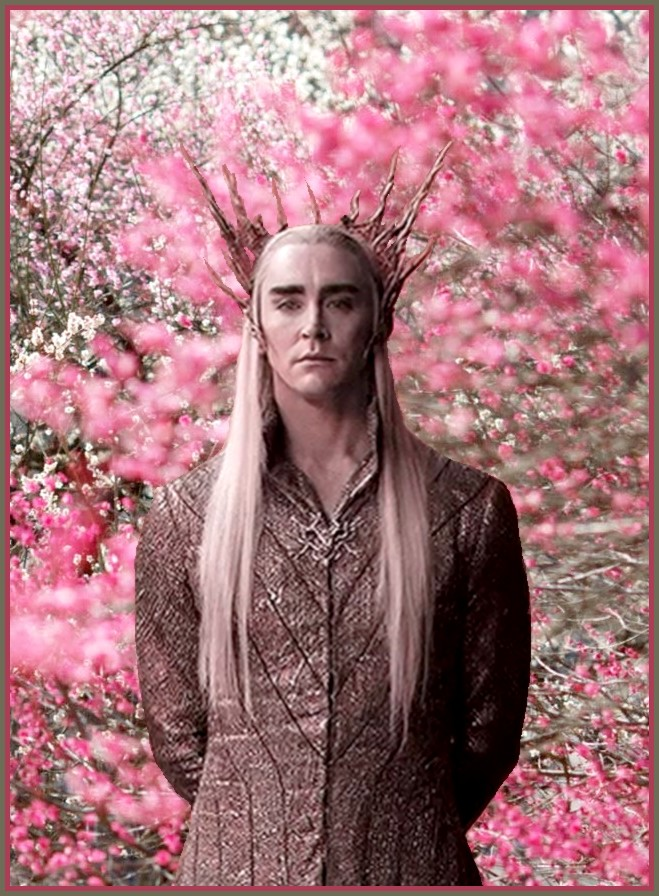 King Thranduil: The life in pink by Ysydora