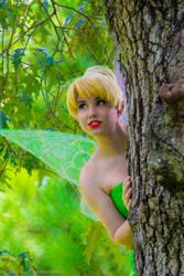 Tinker Bell- Curiosity
