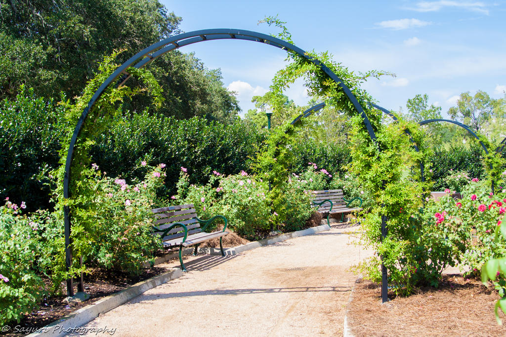 Peaceful Garden by sayuri13