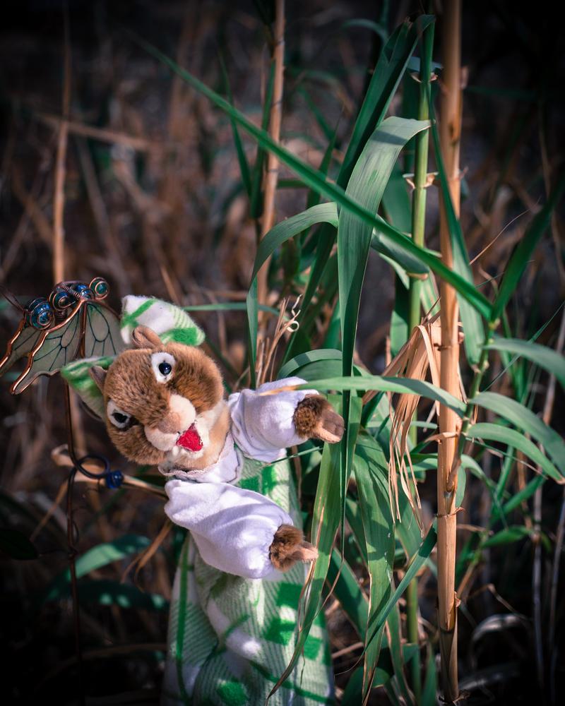 Little Amy in the Garden 4 by foreverprairie