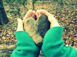 365 Project-Day 2: Love is Like A Rock