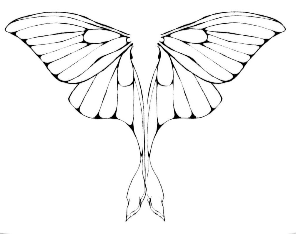 Luna Moth Wings by junkyardxxxdog