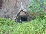 tree house stock