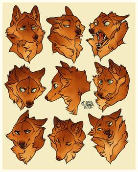 Rihla expressions