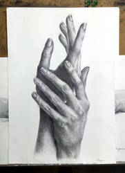 Study of the hands - pencil drawing by Hanulsora
