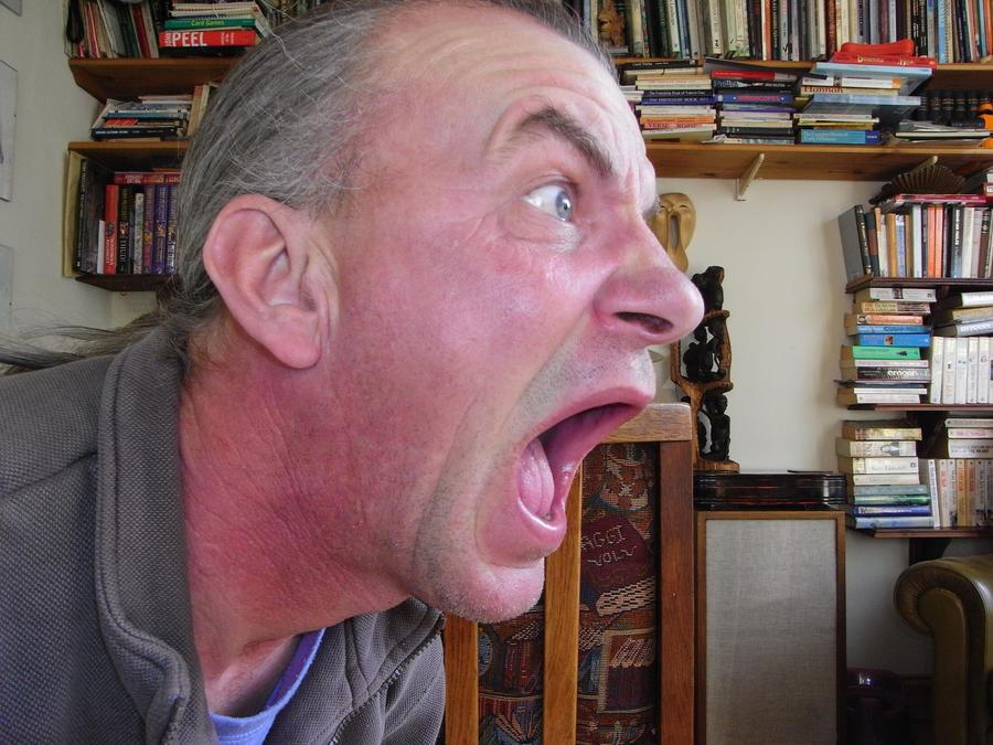 scream by alastock