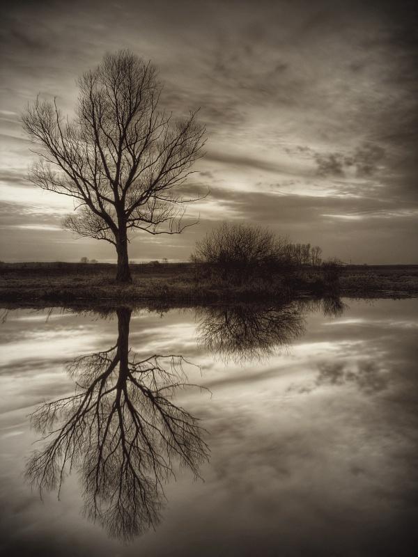 Reflection by jeremi12