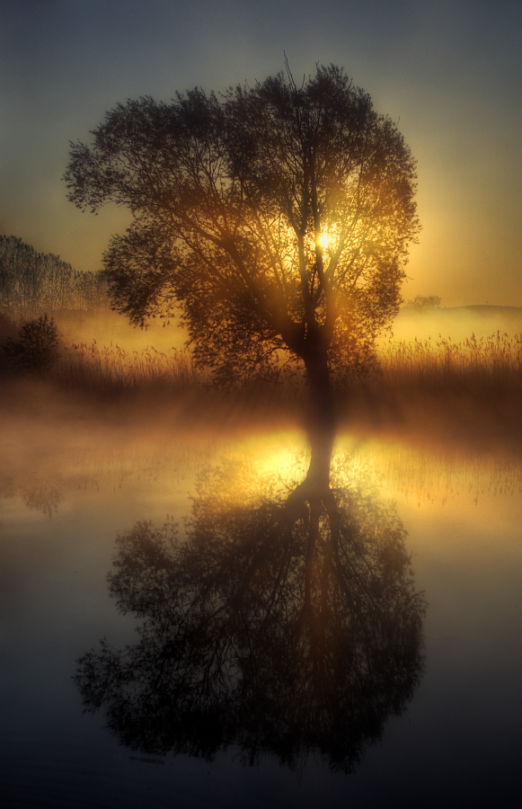 Morning mist by jeremi12