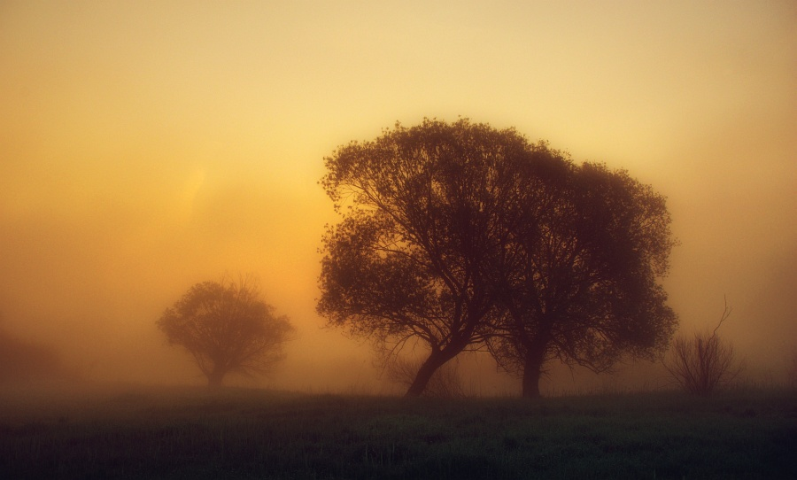 Morning glow by jeremi12
