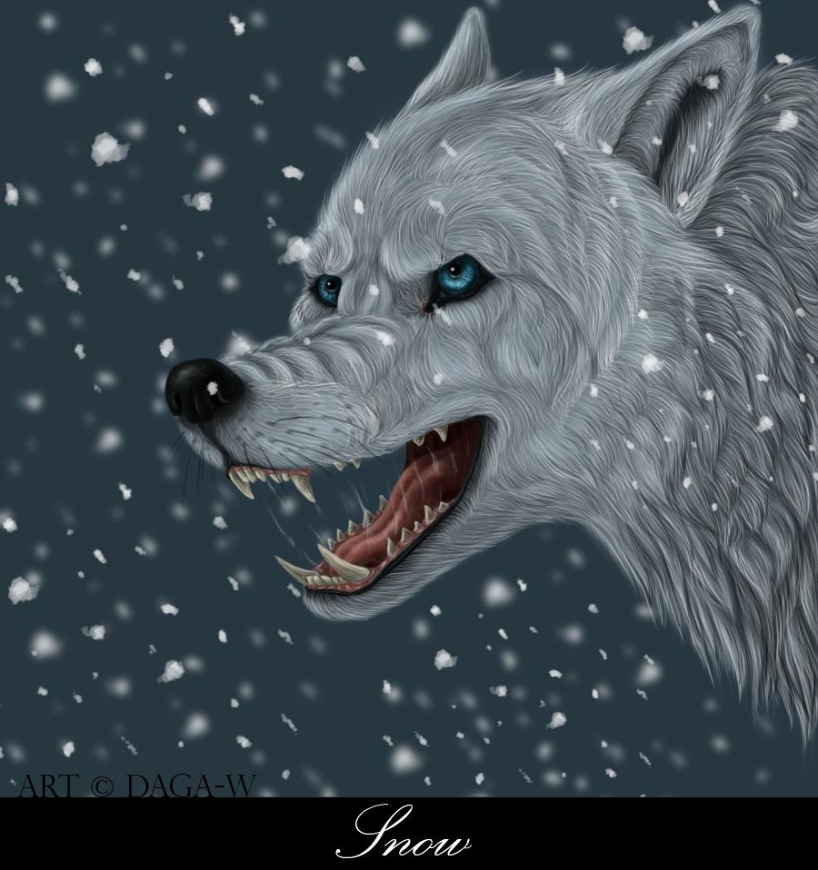 Snow by Daga-W