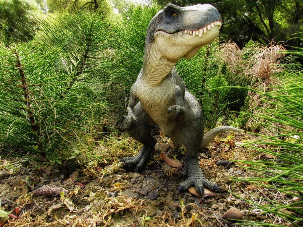 Dinosaur Photos by SylxeriaGuardian