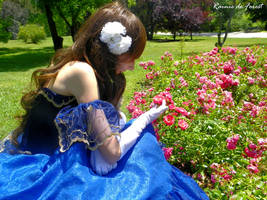 Delicate flower - Dress ball Hungary cosplay