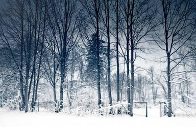 Winter wonderland by laurafee