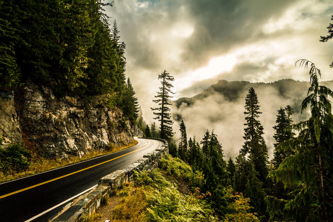 Fog Ahead by 5isalive