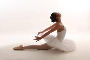 White Swan - 2 by rin-no-michiei