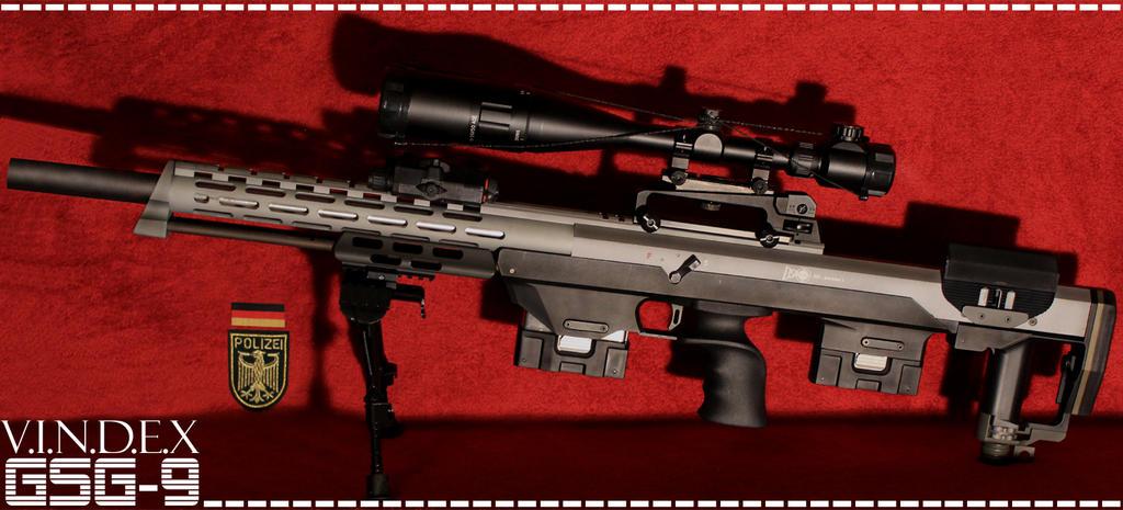 DSR-1SD - GSG9 by PhelanDavion