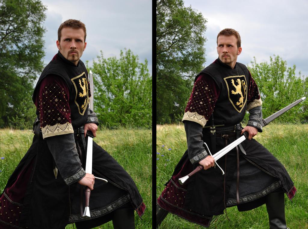 Taking The Sword STOCK by PhelanDavion