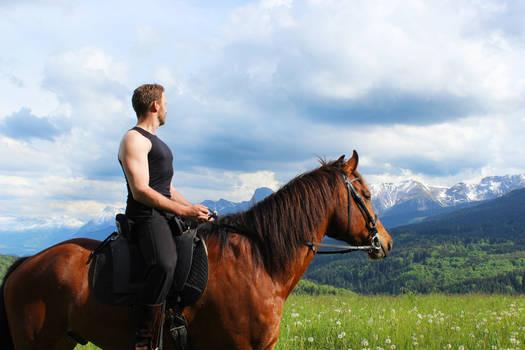 Horseman STOCK I