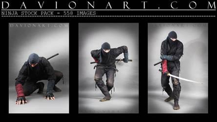 Ninja DSP