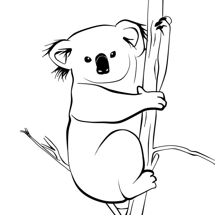 Line Drawing Koala : Koala lineart by ijhand on deviantart