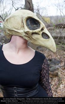Sara Harris - Crow Skull Mask I