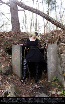 Sara Harris - Crow Skull Mask II