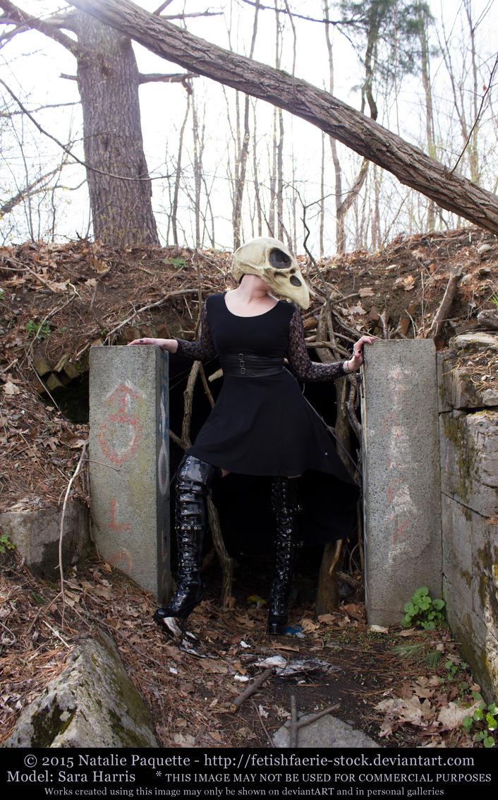 Sara Harris - Crow Skull Mask II by fetishfaerie-stock