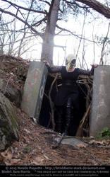 Sara Harris - Crow Skull Mask III by fetishfaerie-stock