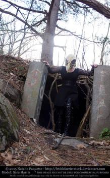 Sara Harris - Crow Skull Mask III