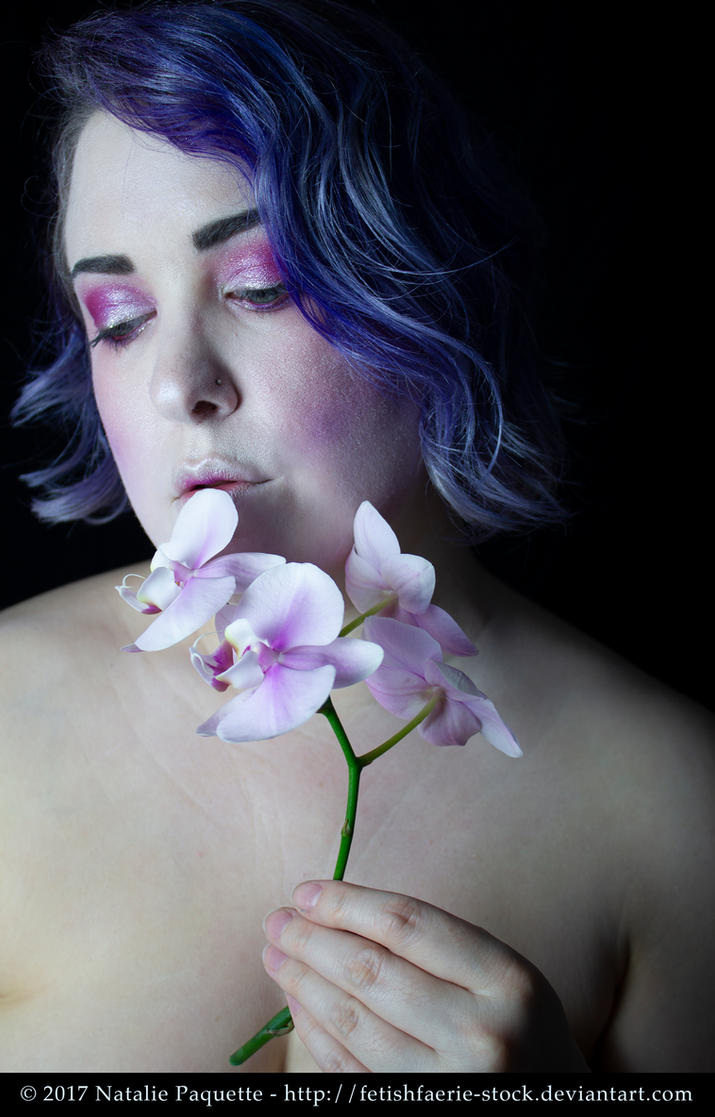 Orchid I by fetishfaerie-stock