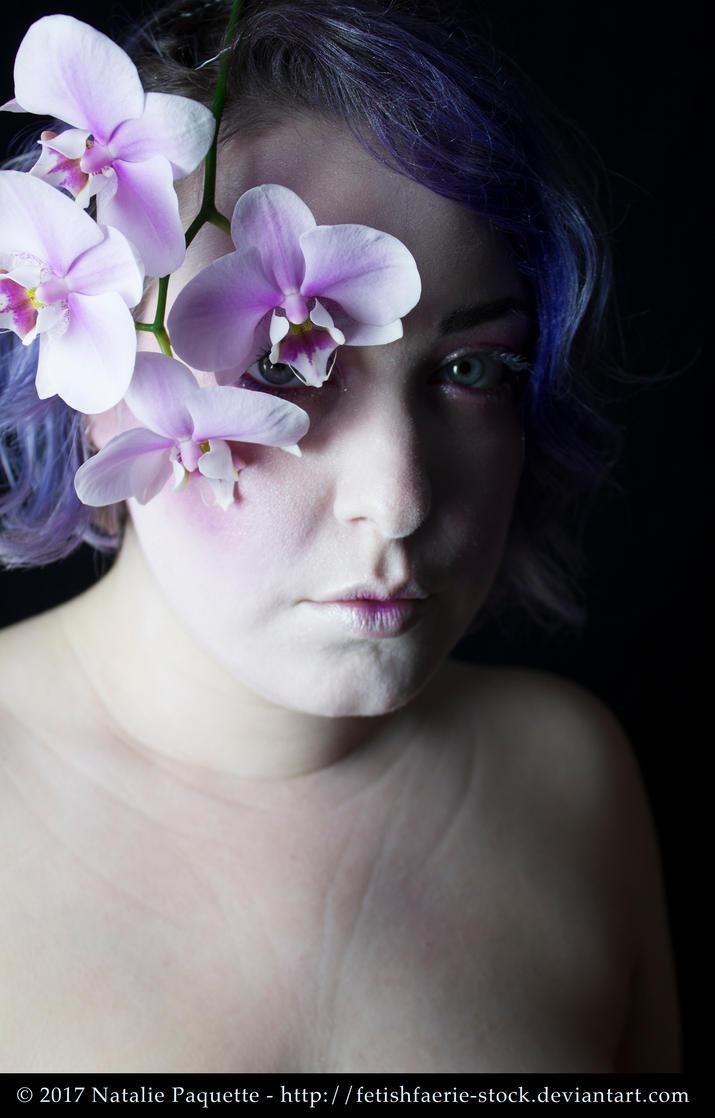 Orchid II by fetishfaerie-stock