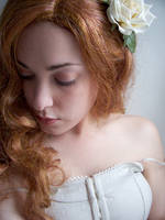 White Rose II by fetishfaerie-stock