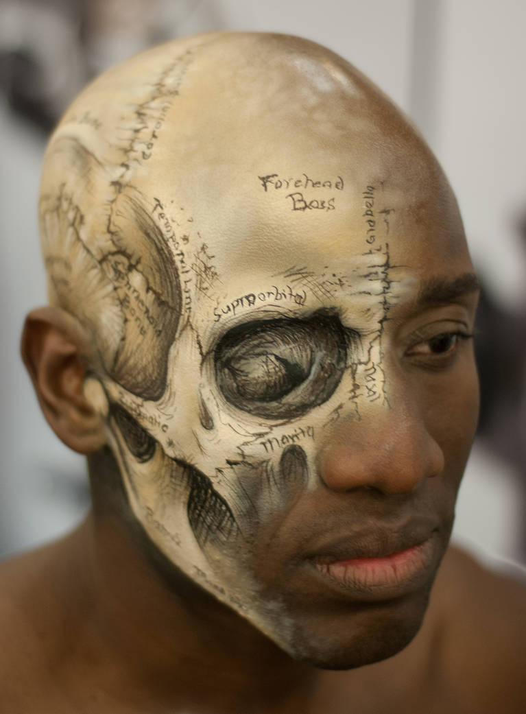 IMATS 13 - Gray's Anatomy