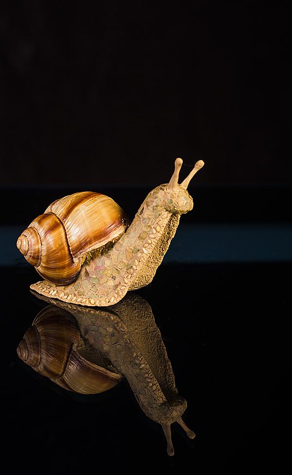 Escargot on the Go - Tall One by Battledress
