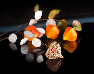 Chinese Lantern and Silver Dollars