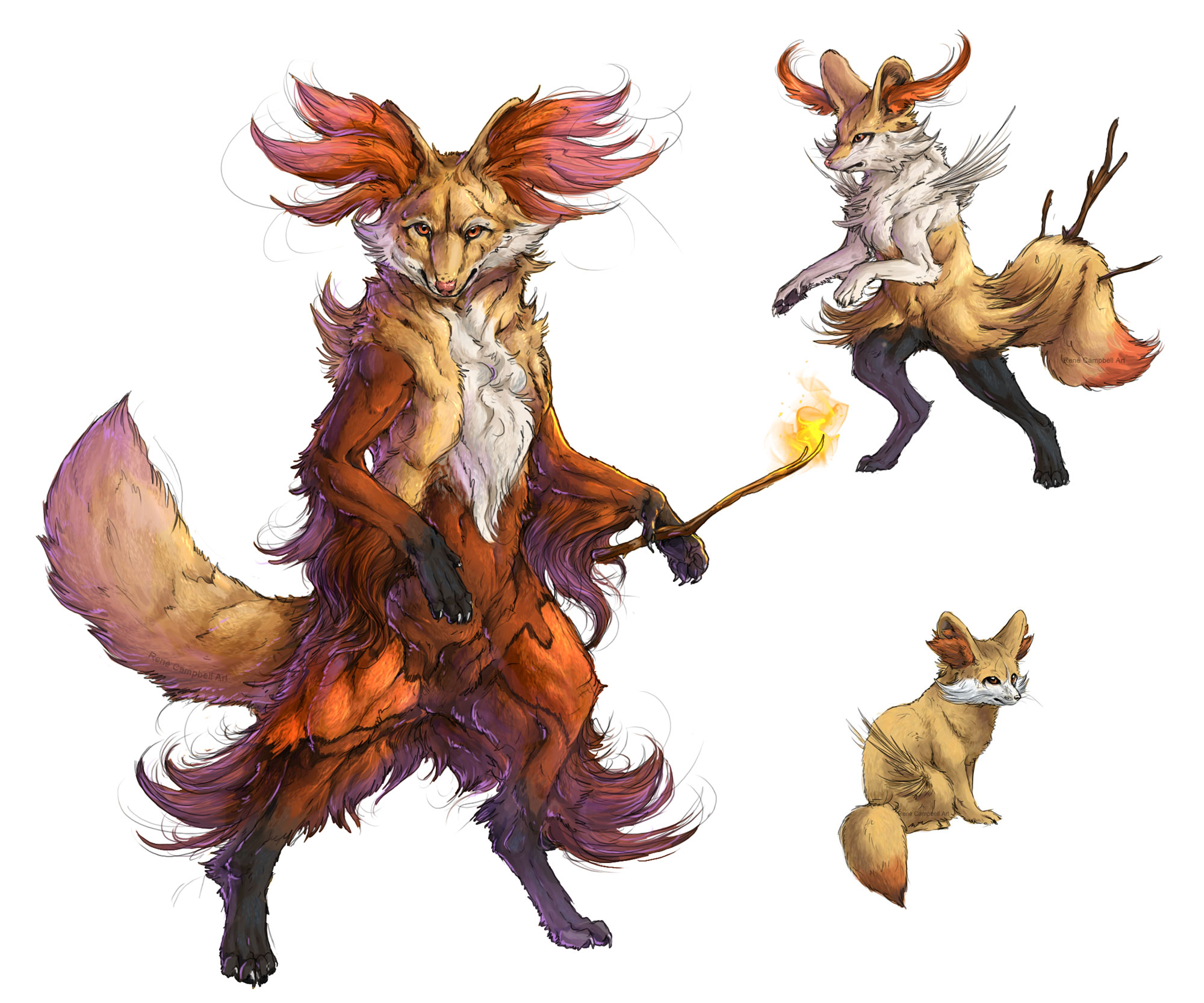 Realistic Pokemon: Fennekin Evolution Line by ReneCampbellArt