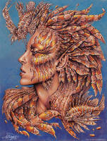 The Lady Lionfish