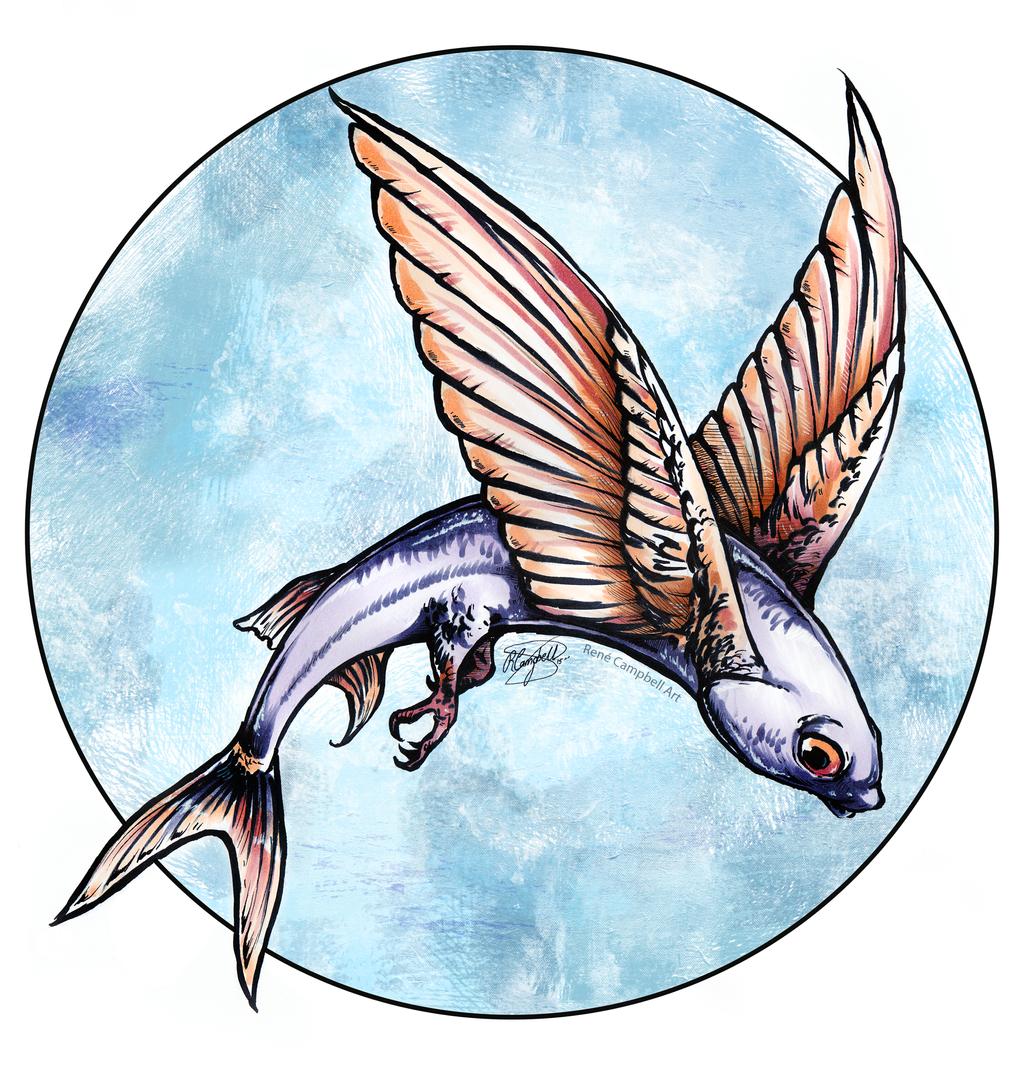 Flying Fish By Renecampbellart On Deviantart