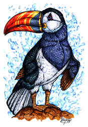 Day 17: Toucan Puffin by ReneCampbellArt