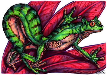 Day 31: Frog Squirrel by ReneCampbellArt