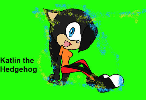 Katlin the Hedgehog