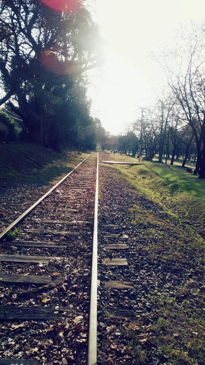 vas del tren/autumn  by Kyumi-Jyumi