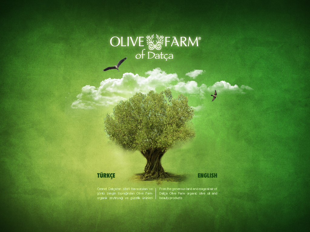 olive farm web interface2 by grafiket
