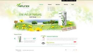 Naturex Website Design