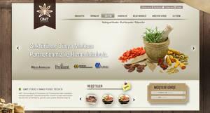 Gmt Food Concept Design