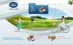 Xirman Website
