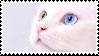 cat 1 by catmilkz
